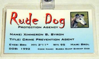 rude dog protection agency